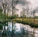 有一个小临时池塘的湿森林恶劣天气的 免版税库存图片