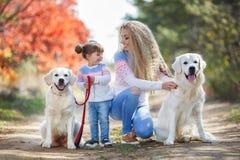 有一个小女孩和两条狗的一个年轻母亲在步行在公园在秋天 免版税库存照片