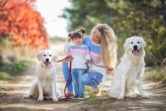 有一个小女孩和两条狗的一个年轻母亲在步行在公园在秋天 库存照片
