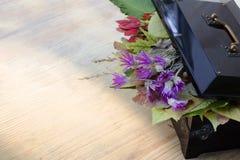 有一个开放盒盖的葡萄酒箱子,在下秋叶和野花 免版税库存照片