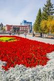有一个开花的花圃的列宁广场 编译的街市现代新西伯利亚俄国 库存照片