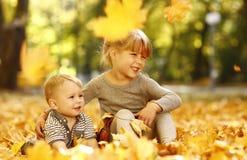 有一个弟弟的美丽的小女孩在秋天公园p 库存照片
