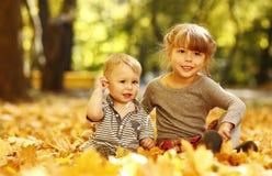 有一个弟弟的美丽的小女孩在秋天公园p 免版税库存照片