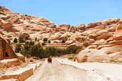有一个推车和一头驴的一条石路在Petra的岩石中, 免版税库存图片