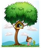有一个放大透镜的一个女孩在一棵大树下 图库摄影