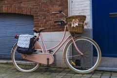 有一个柳条筐的老葡萄酒自行车与丝带 库存图片