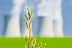 有一个核电站的春天开花在背景中 库存图片