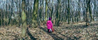 有一个玩偶的女孩在森林里 库存图片
