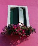 有一个窗口的开花的阳台在房子和许多花盆里 免版税图库摄影