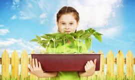 有一个箱子的小女孩在庭院篱芭附近的幼木 库存图片
