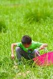 有一个篮子的一个小男孩在草 免版税库存图片