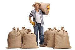 有一个粗麻布大袋的成熟农夫在他的肩膀 免版税库存图片
