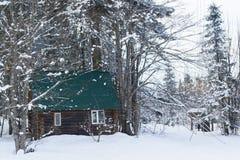 有一个绿色屋顶的木土气房子在一个多雪的森林里站立 免版税库存图片