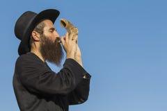 有一个羊角号的正统犹太人在Rosh Hashana 库存照片