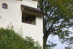 有一个老橡树的旅行癖教堂 图库摄影