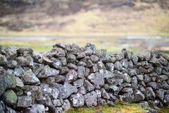 有一个老石墙的美丽的绿色草甸 库存图片