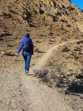 有一个背包的一个女孩在山的容易的步行狗指南的 库存照片