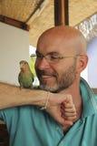 有一个胡子的微笑的秃头人与鹦鹉 免版税库存照片