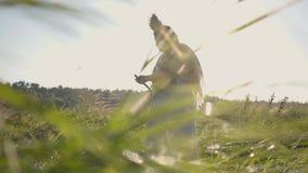 有一个花圈的逗人喜爱的肥满妇女在她的割与大镰刀的头草在绿色夏天领域 在领域的工作 影视素材