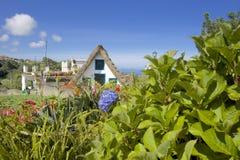 有一个茅屋顶的议院,围拢由在海岛上的花 免版税库存照片