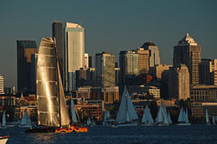 有一个银色风帆的风船参加比赛 库存图片