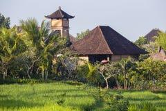 有一个铺磁砖的屋顶的热带房子在米中调遣 巴厘岛, Ubud,印度尼西亚 库存图片