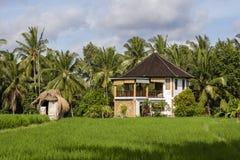 有一个铺磁砖的屋顶的热带房子在米中调遣 海岛巴厘岛,印度尼西亚 库存图片