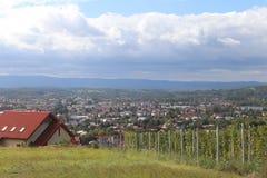有一个镇的绿色葡萄园在背景中 葡萄酒酿造在温带 家庭和农场土地 酒精生产从 库存照片