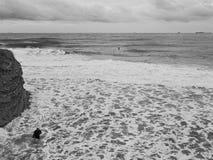 有一个风帆冲浪委员会的运动员在冷的12月早晨 黑海, Gelendzhik,俄罗斯 库存照片