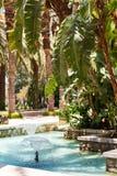有一个水池的美丽的热带庭院与喷泉 库存照片