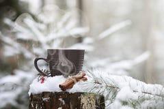 有一份热的饮料的一个杯子在与cinn的冬天森林热的可可粉 免版税库存照片
