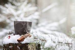 有一份热的饮料的一个杯子在与cinn的冬天森林热的可可粉 库存照片