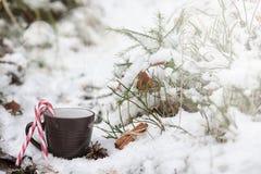 有一份热的饮料的一个杯子在与cinn的冬天森林热的可可粉 免版税库存图片