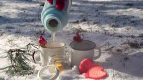 有一份热的饮料的一个杯子在冬天森林里 股票视频