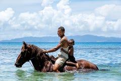 有一匹男孩骑乘马的年轻人在塔韦乌尼岛海岛上的海滩 库存照片