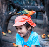 有一只五颜六色的鹦鹉的女孩在她的头 免版税库存图片