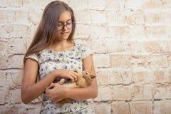 有一只喜爱的小猫的女孩 库存照片