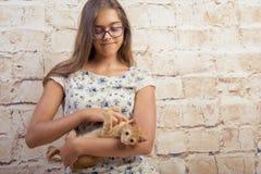 有一只喜爱的小猫的女孩 库存图片