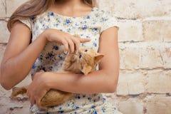 有一只喜爱的小猫的女孩 免版税图库摄影