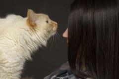 有一只大米黄斗眼的猫的一个女孩在她的胳膊 库存照片