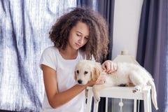 有一只小金毛猎犬的少年女孩 图库摄影