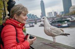 有一只海鸥的旅游妇女在江边在伦敦 库存图片