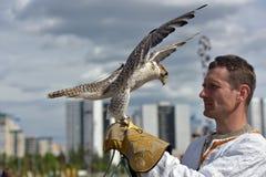 有一只猎鹰的一个人在他的在斯拉夫的全国衣裳的手上在Th 图库摄影