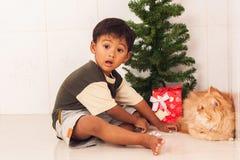 有一只美丽的波斯猫的逗人喜爱的小男孩 库存图片