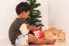 有一只美丽的波斯猫的逗人喜爱的小男孩 图库摄影