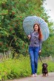 有一只达克斯猎犬的女孩在一个雨天 免版税图库摄影