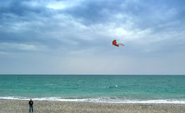 有一只风筝的人在海滩费用 库存照片