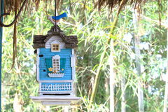 有一只鸟的装饰垂悬的蓝色议院在上面 库存照片