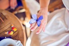 有一只紫色蝴蝶的新娘的手 免版税库存照片