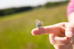 有一只蝴蝶的女性手指对此 免版税库存图片